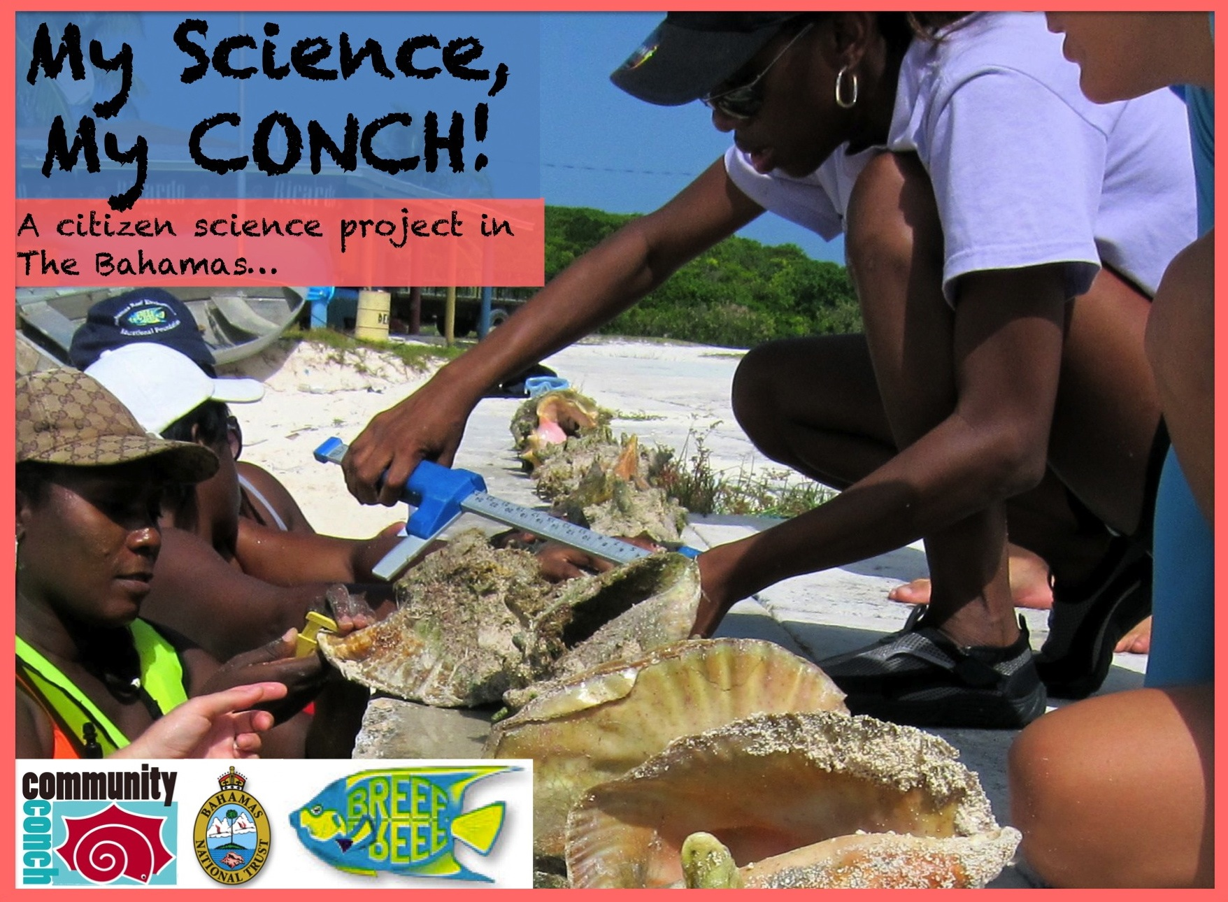 my science my conch3